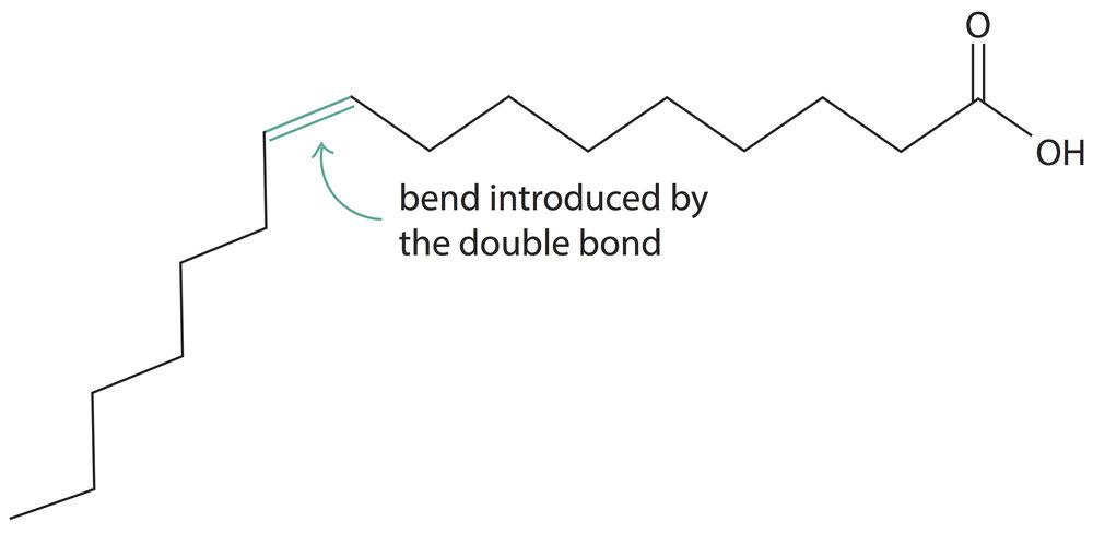 palmitoleic-acid-kink