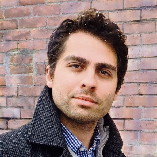 Mohammad Hamidian    Data Science   Harvard Physics Faculty,Experimental Physics PhD (Cornell)