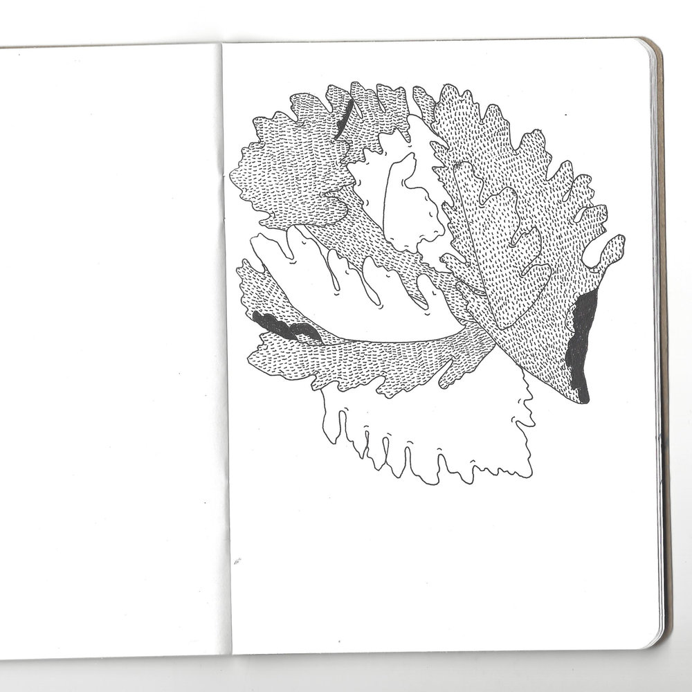 sketch_03.jpg
