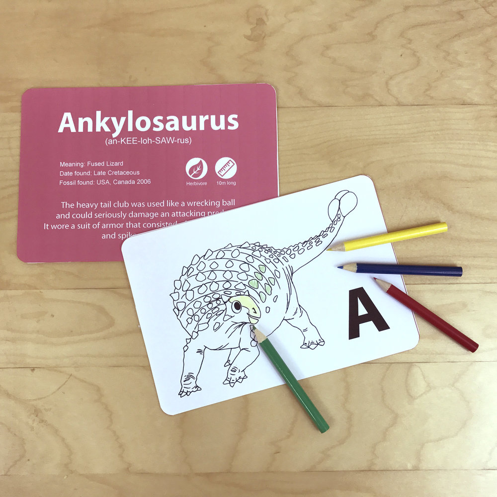 [Colouring Cards with Dinosaurs facts and colouring pencils]