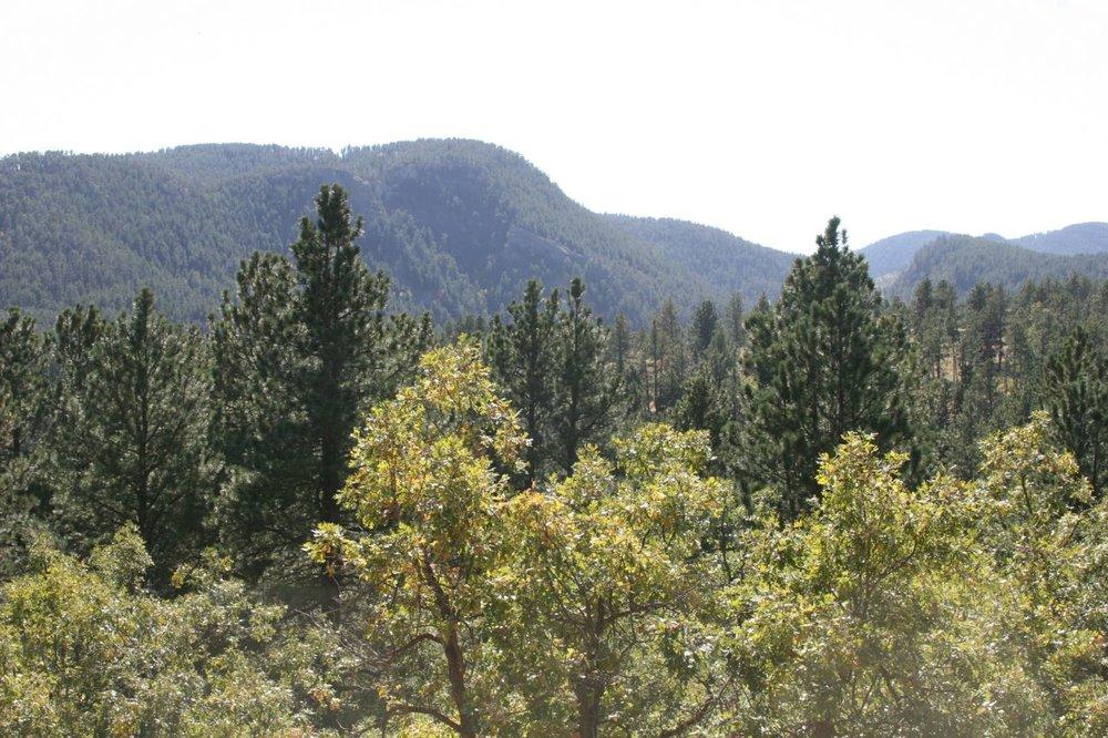West of Sturgis -