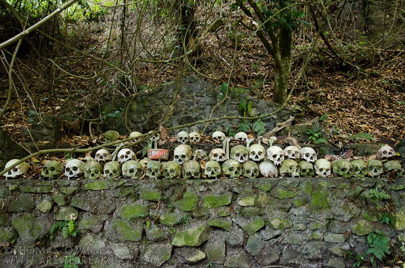 Altar, Skulls, Trunyan Cemetery, Batur Lake, Bali