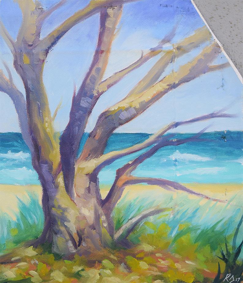 'Beach Tree'