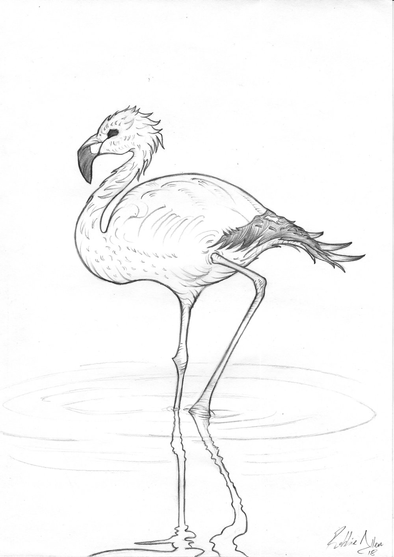 'El Flamenco' Drawing - robbieallenartist.jpg