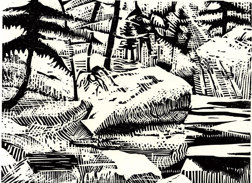 pine-brook.jpg