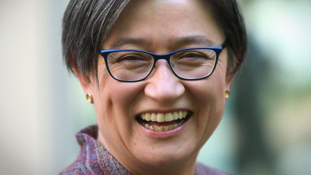 Senator Penny Wong said alliances were about common interests.Photo: Andrew Meares