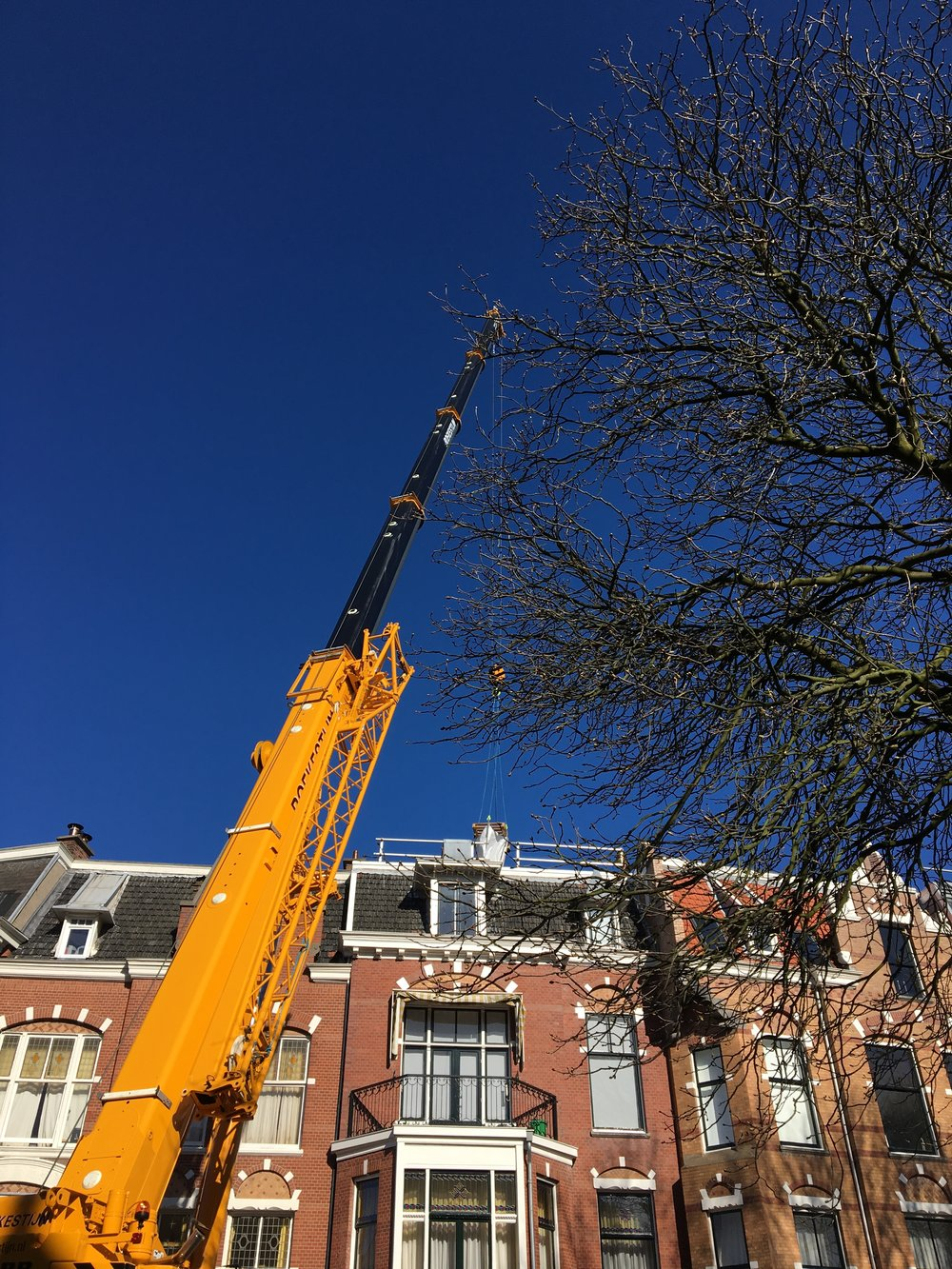 Energy Guards Sweelinckplein Groen dak