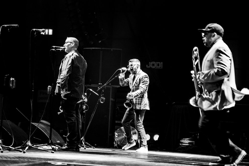 Reel Big Fish photo shoot 2017 by jodiphotography 18.jpg