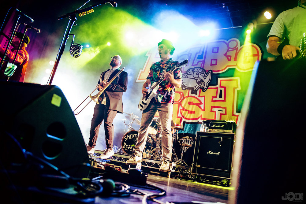 Reel Big Fish live at o2 Ritz Manchester 2017 by jodiphotography 12.jpg