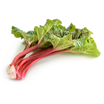 rhubarb with leaves