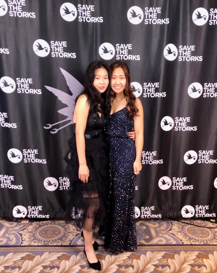 Storks Ball 2019, Washington DC
