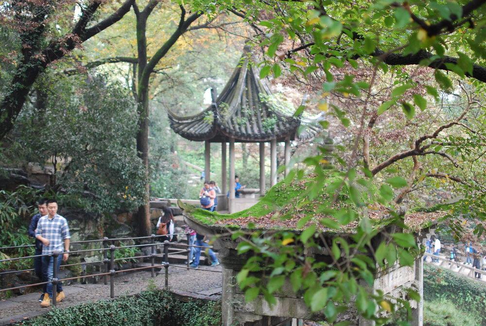 Tiger Hill Garden.JPG