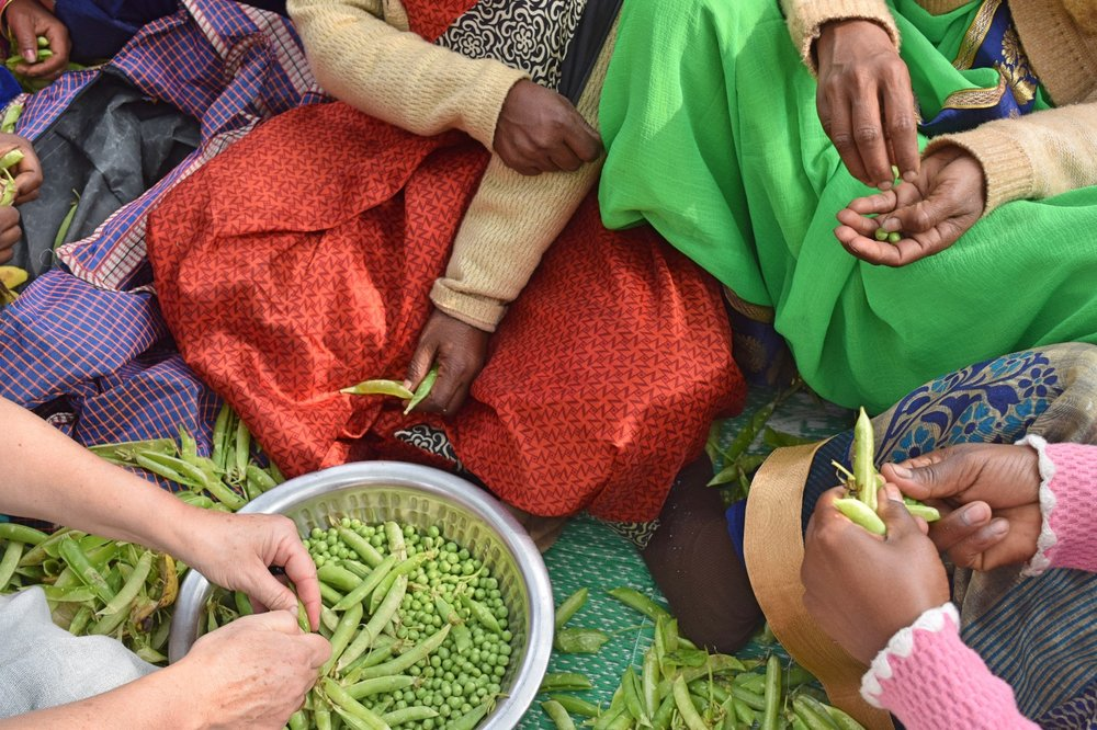 Solid_Crafts_India_Paces_YearlyPicknick_2019 (2).jpeg
