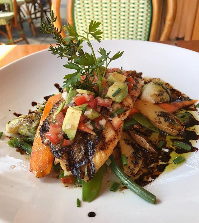 Striped Bass with a side of sunshine 🌞 #cafedalsace . . . . . #bass #stripedbass #seafood #spring #summer #sunshine #yum #farmtotable #frenchfood #frenchbistro #eaterny #eatingnyc #eeeeeats #thrillist #tastingtable #tasteofnyc #foodporn #forkyeah #foodiegram #heresmyfood #healthyeating #feedfeed #nycrestaurants #newforkcity #nyc #ues