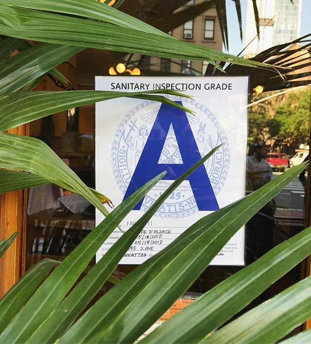 What's that hiding in the tree? It's another A rating! #cafedalsace . . . . . #quality #freshandclean #nycrestaurants #eeeeeats #eaterny #eatingnyc #feedfeed #foodgawker #foodiegram #nyceats #newforkcity #nyc #ues