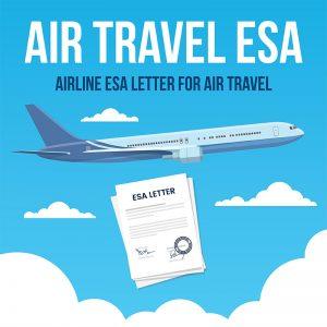 air-travel-esa-product-300x300.jpg