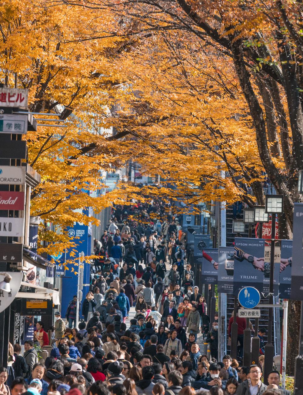 Harajuku | esplanade