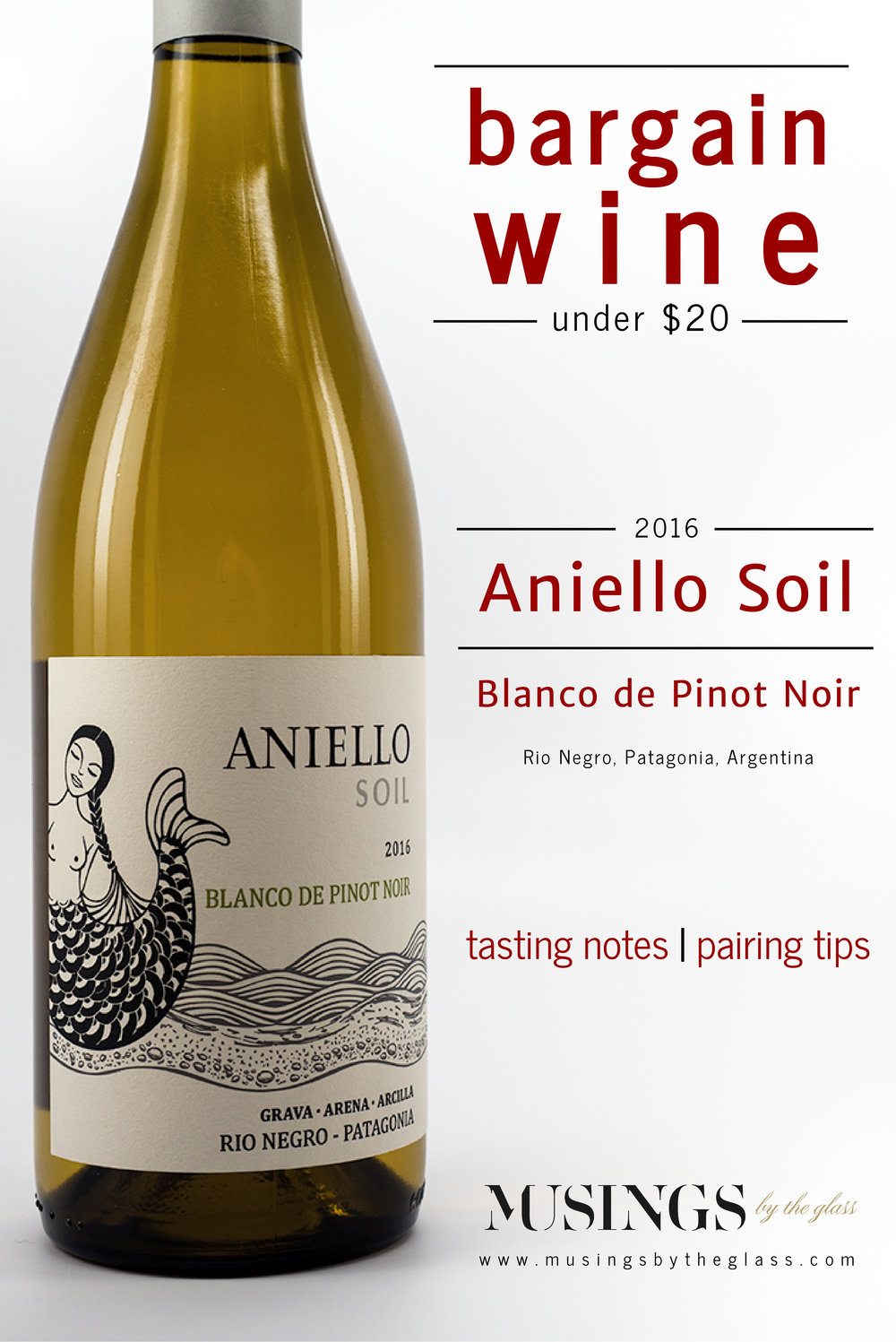 Musings by the Glass - Bargain Wines - 2016 Aniello Soil Blanco De Pinot Noir Patagonia Argentina