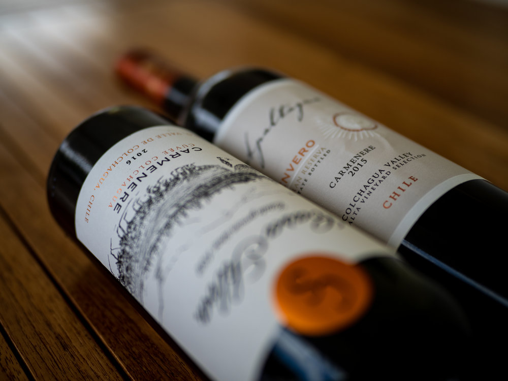 Musings by the Glass - Carmenere Rise to Prominence in New World