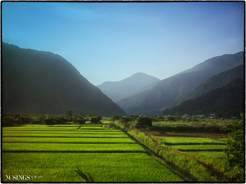 Taiwanese Countryside by Train