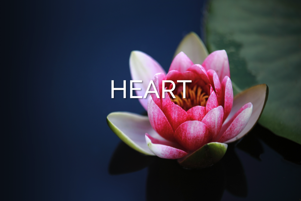 Healing Your Joyful Heart