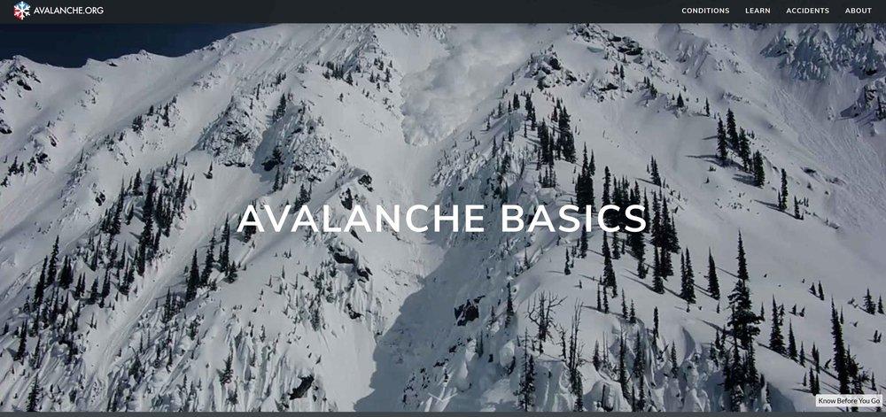 Avalanche Basics Cover