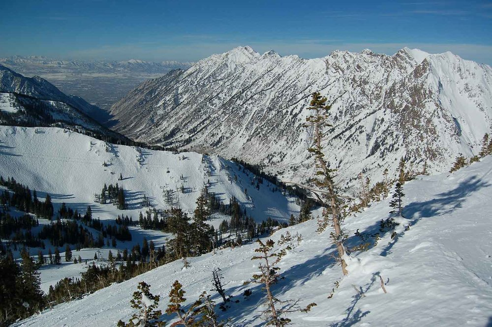 Little Cottonwood Canyon from West side of Mt. Baldy, overlooking Peruvian Gulch area of Snowbird. Photo copyright by Matthew Wallace.