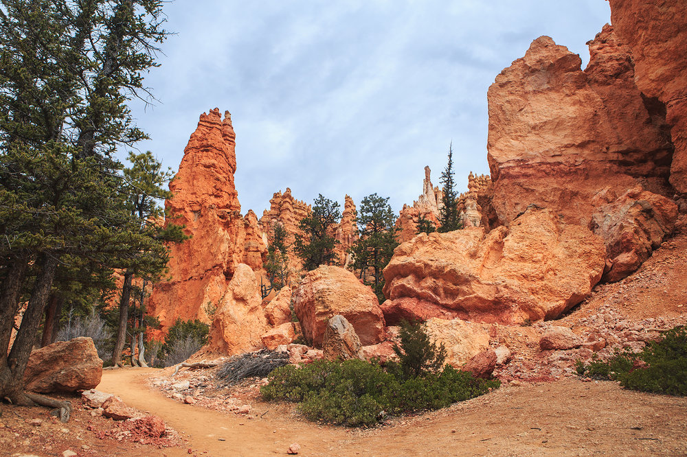 Bryce Canyon Trails