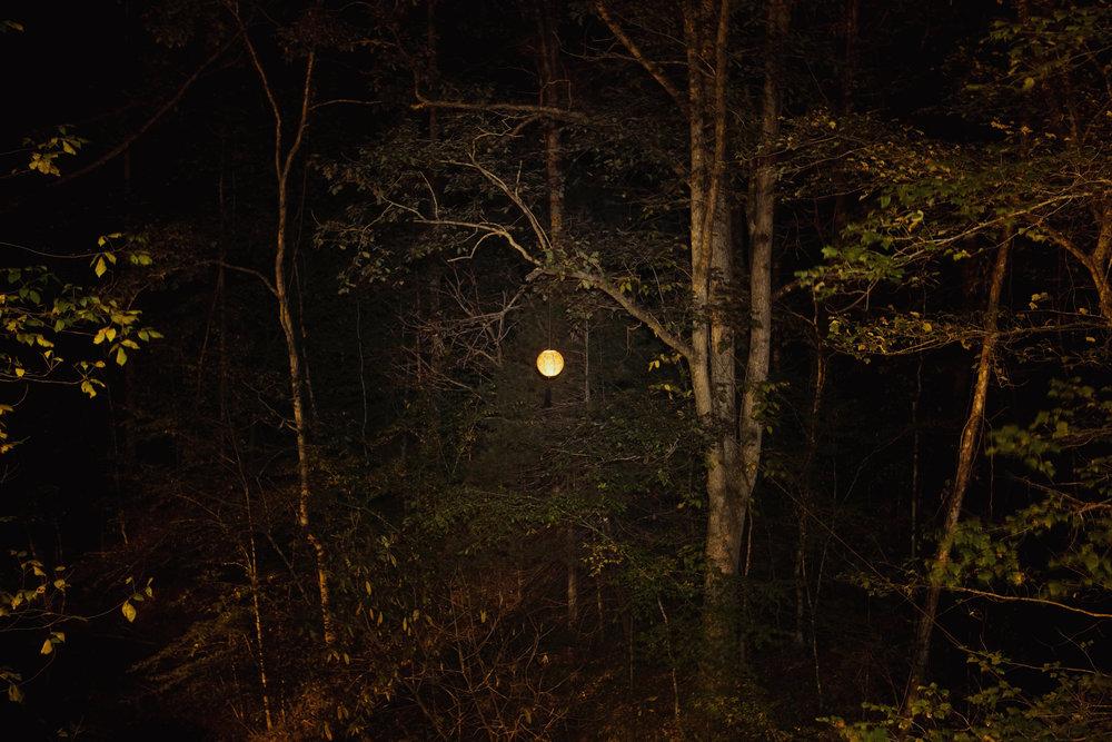 100_lantern_0257.jpg
