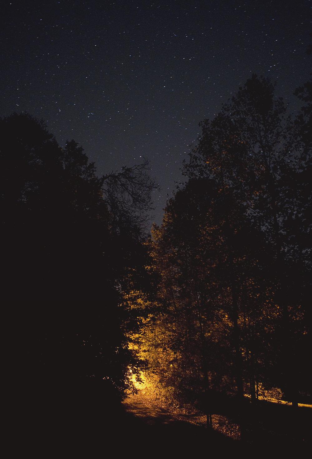 100_TreesStreetlightStars_0268.jpg