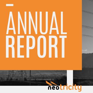 NEOTRICITY ANNUAL REPORT