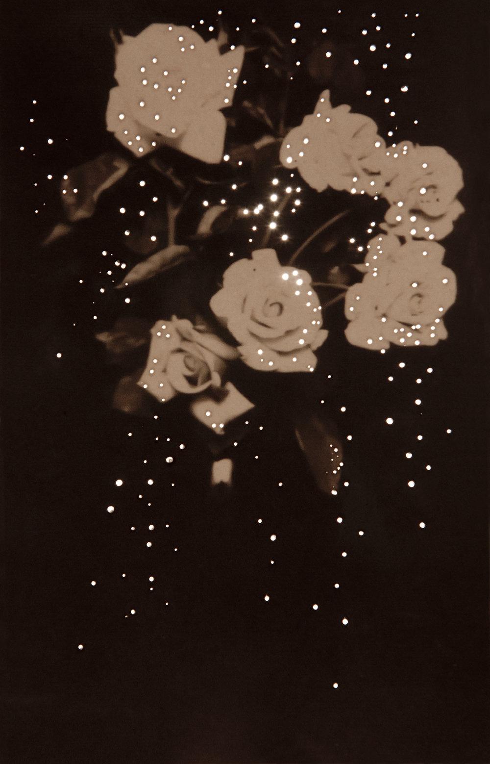 Mom's Roses, 1914