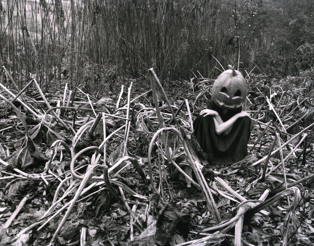 Agnieszka Sosnowska Self-portrait, Halloween, Arnold Arboretum