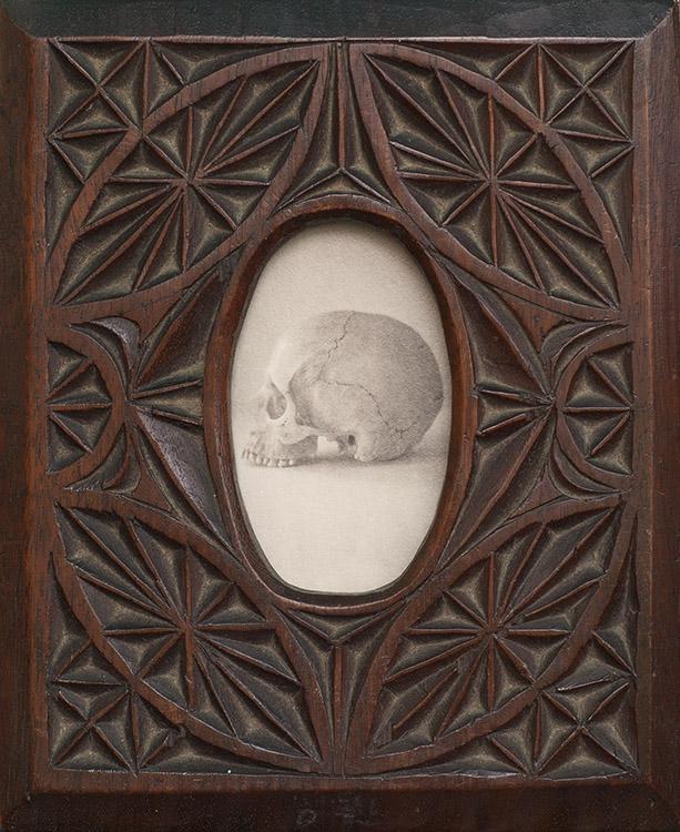 Jefferson Hayman Still Life (Skull)