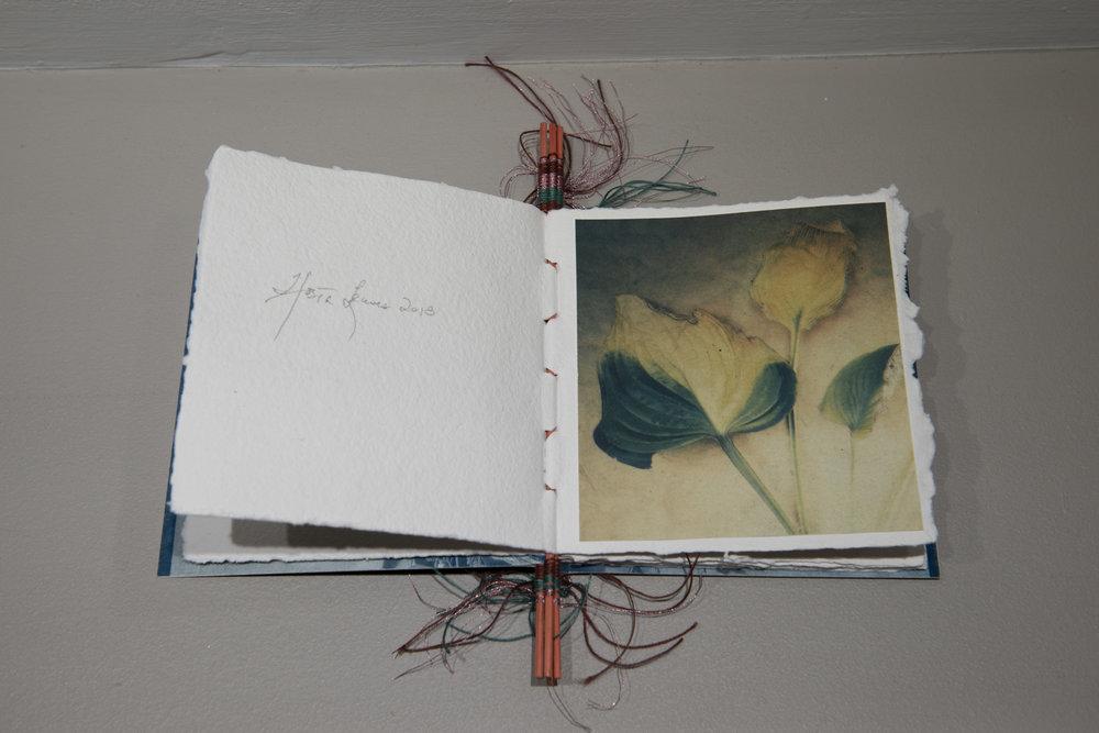 Bloomfield Artist Book.JPG