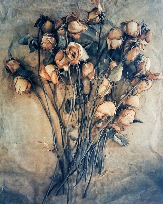 Spent Valentine's Roses by Diana H. Bloomfield  2018 Tri-color gum bichromate . . #artforyourvalentine #valentineroses @dhbloomfieldphoto_dinahlee