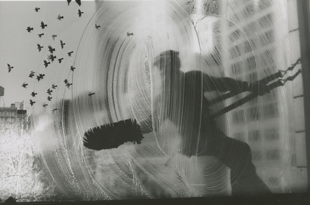 Window Washer with Birds