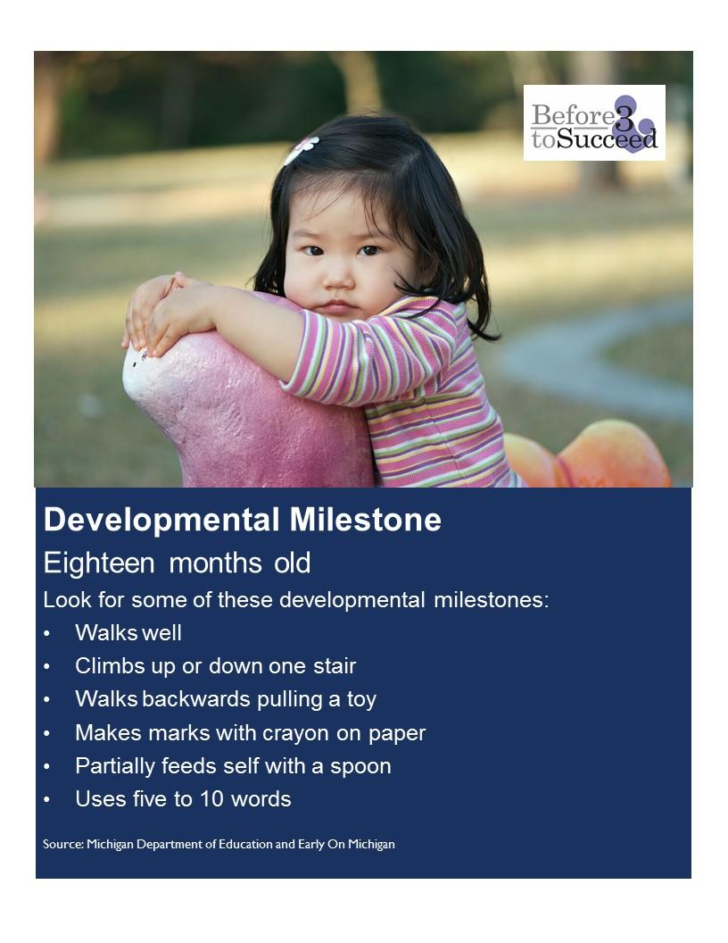 Developmental Milestone 18 months.jpg