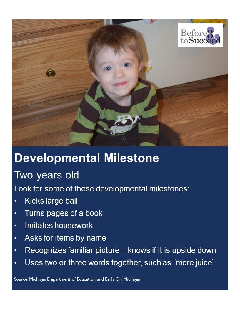 Developmental Milestone 2 years.jpg