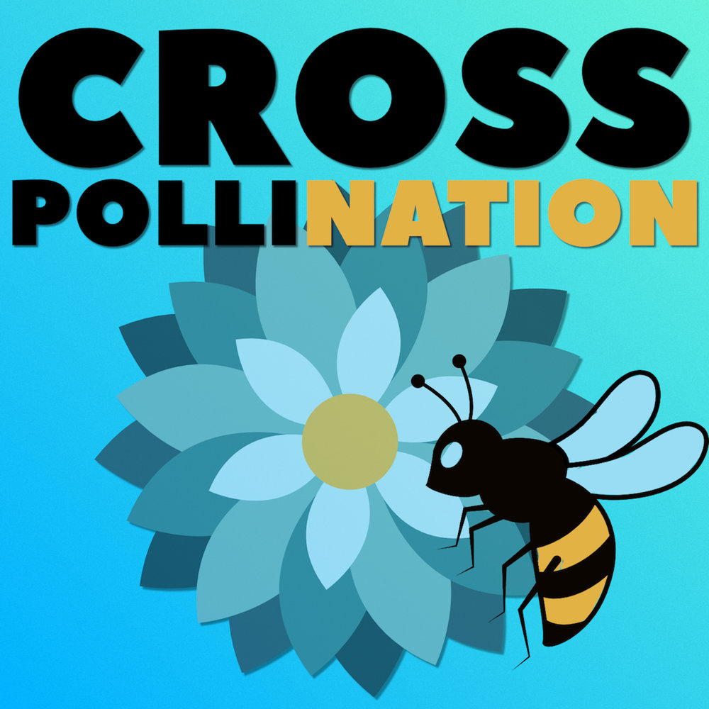 Cross-pollination - A podcast about creativity and innovation. NBee interviews those who combine fields, knowledge and talents to create something new.