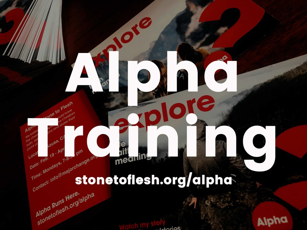 STF-alpha-training.jpg