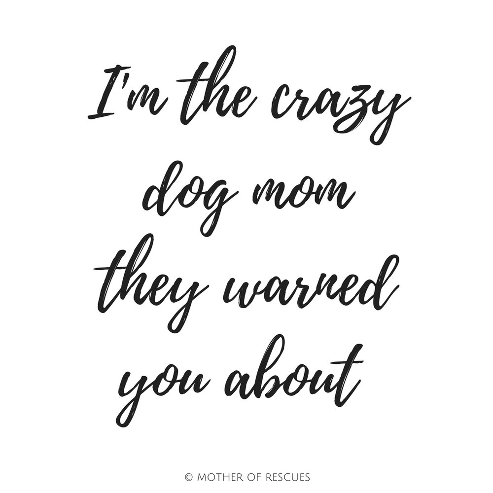 crazy-dog-mom