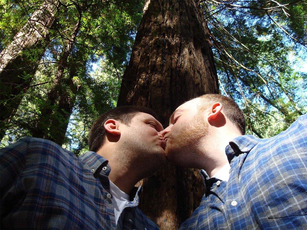 gay-marriage-1571621_1920-sm.jpg
