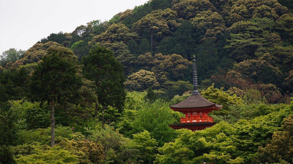 kyoto-japan-sm.jpg