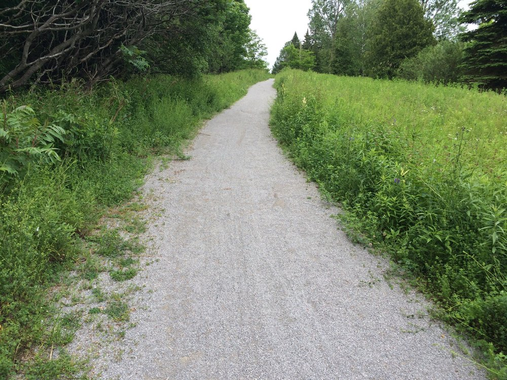 It turns out that pavement is one of those things that you don't appreciate until it's gone. The trail I took went from a paved bike path, to a forest trail, to a narrow bike shoulder on the side of a regular road.