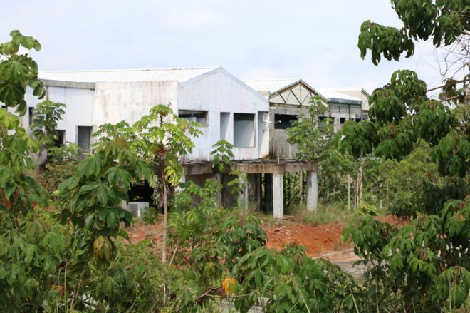 Image captionThe La Barriada health centre stands half finished as the jungle regrows around it