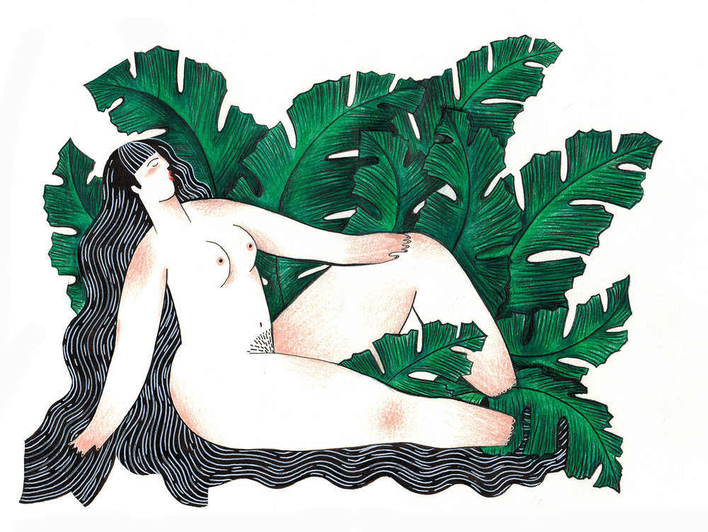 Sensuality-Acanthus-Study.jpeg