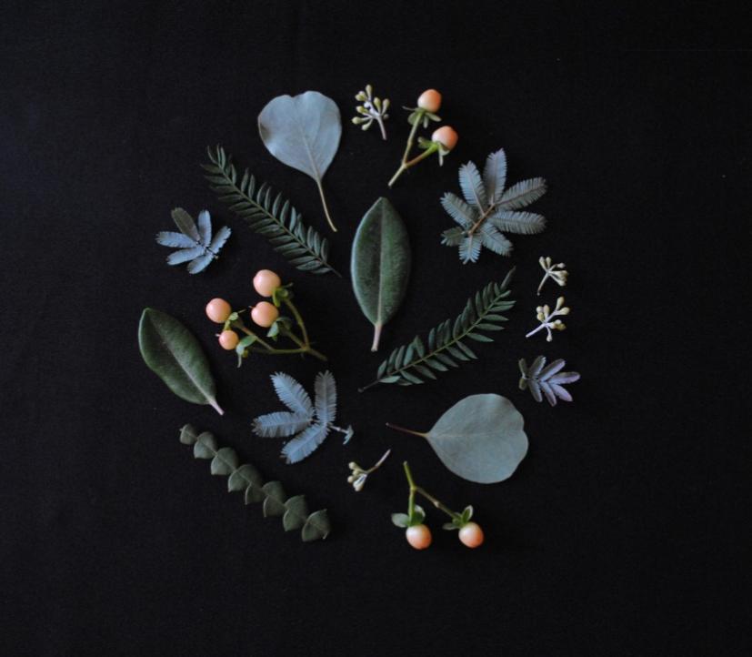 Botanical arrangement created during my workshop by writer and artist Melissa Davis