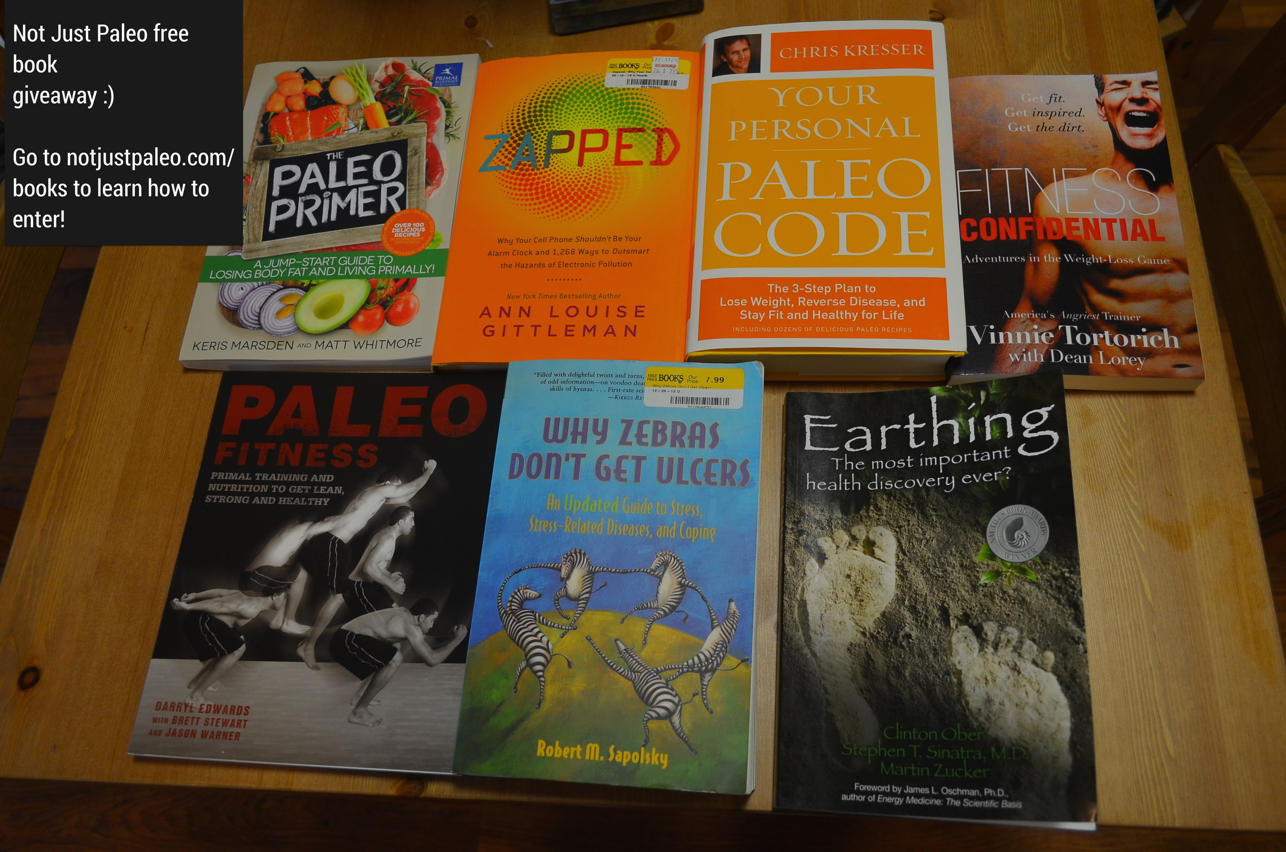 Free Paleo Book Giveaway by Not Just Paleo