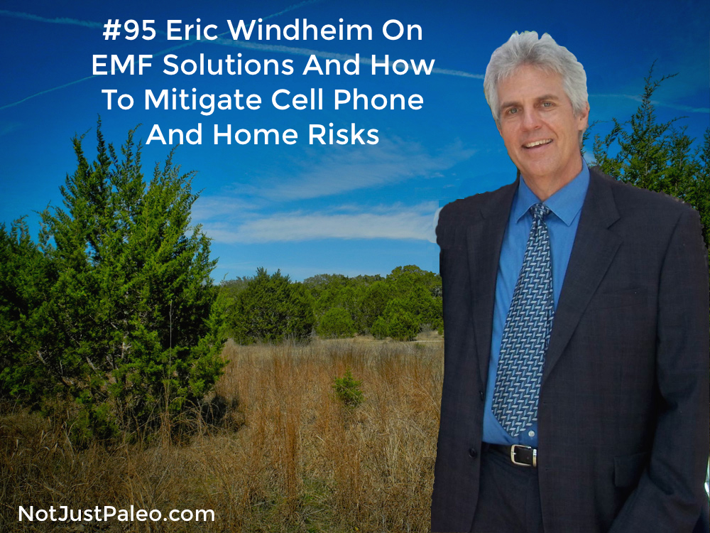 #95 Eric Windheim On EMF Solutions And How To Mitigate Cell Phone And Home Risks